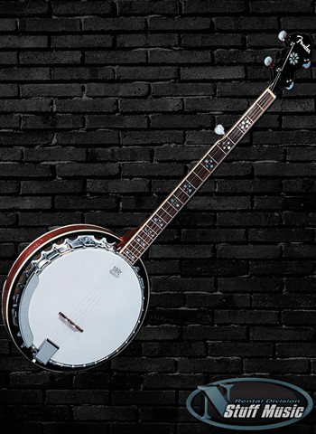 Fender FB 54 5-String Banjo - Rental
